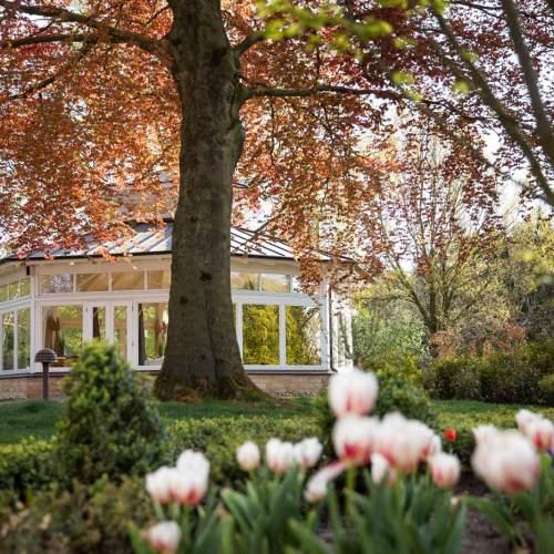 berggasthof-wilhelmshoehe-impressionen-gartenpavillon-im-fruehling